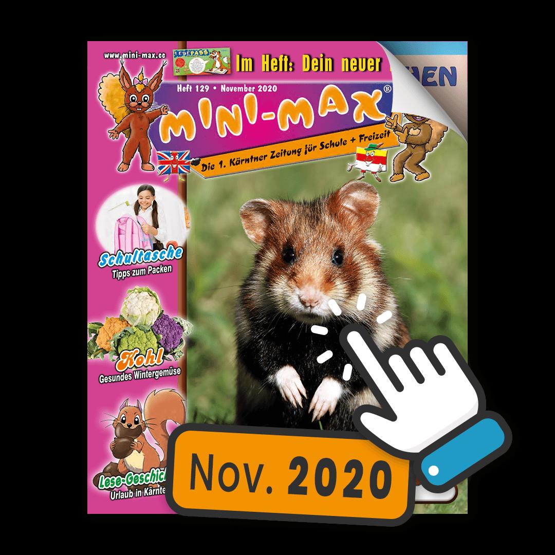 MINI-MAX Heft 129, November 2020