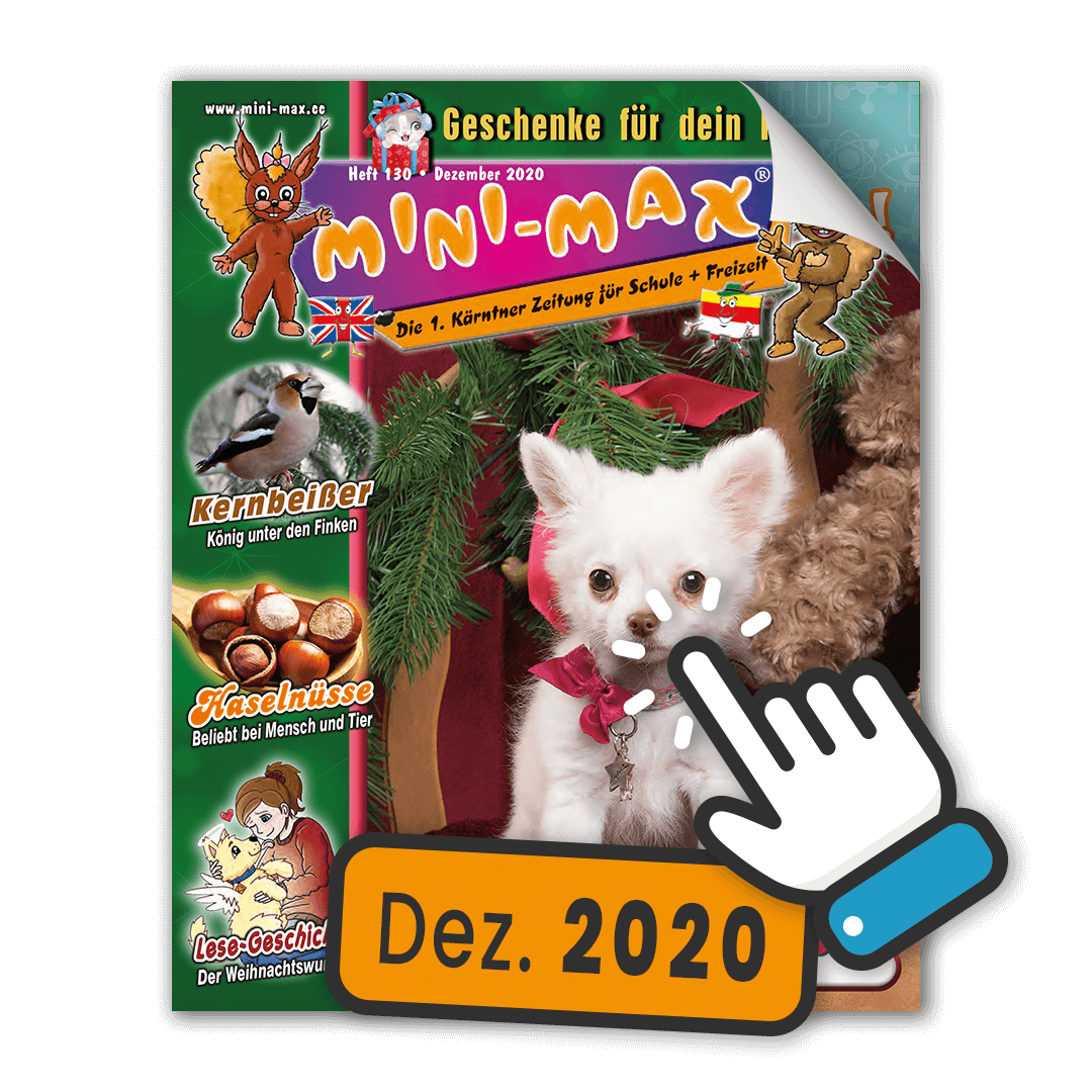 MINI-MAX Heft 130, Dezember 2020