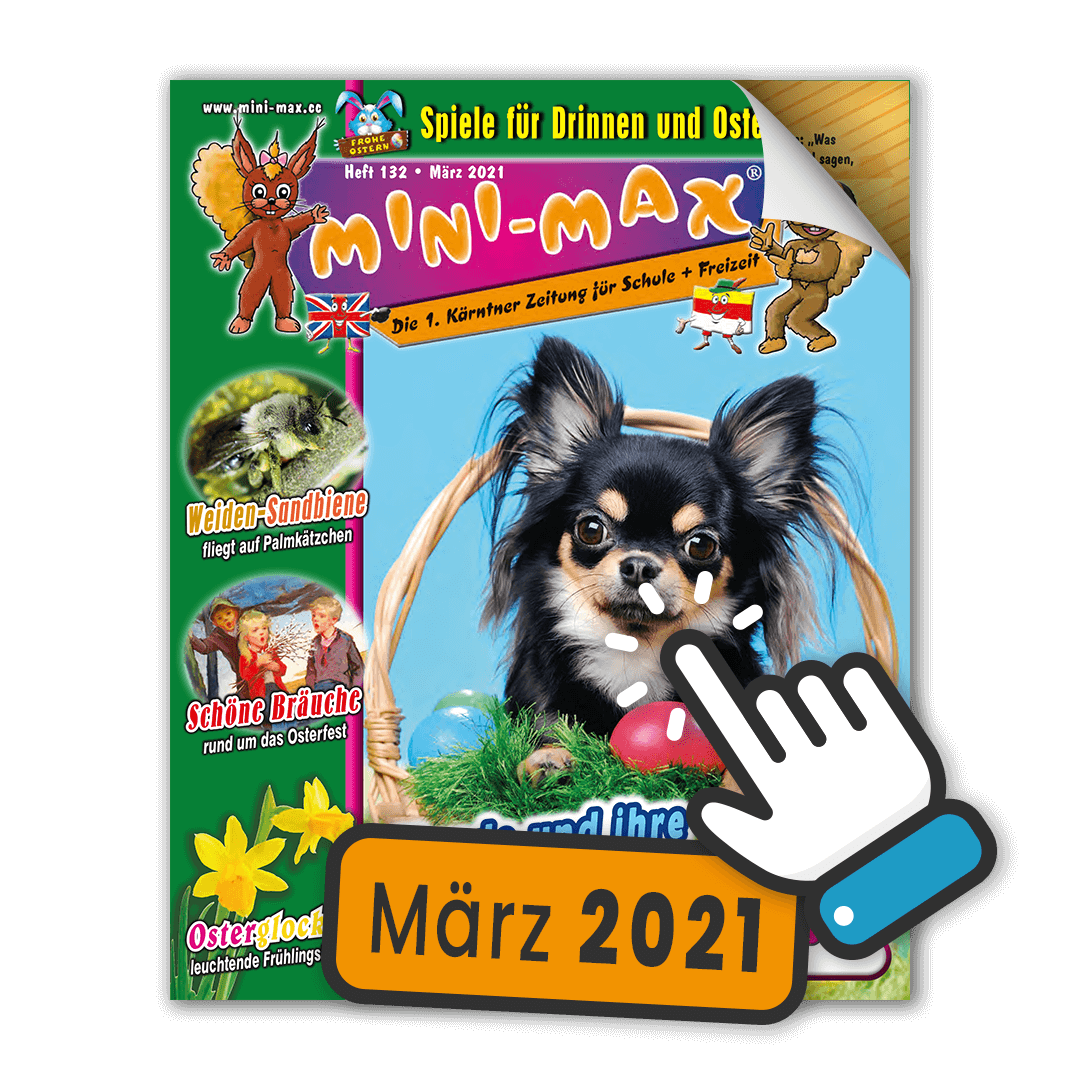 MINI-MAX Heft 132, März 2021