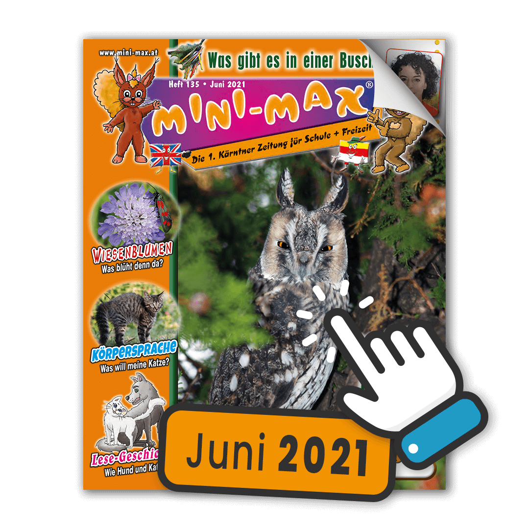 MINI-MAX Heft 135, Juni 2021